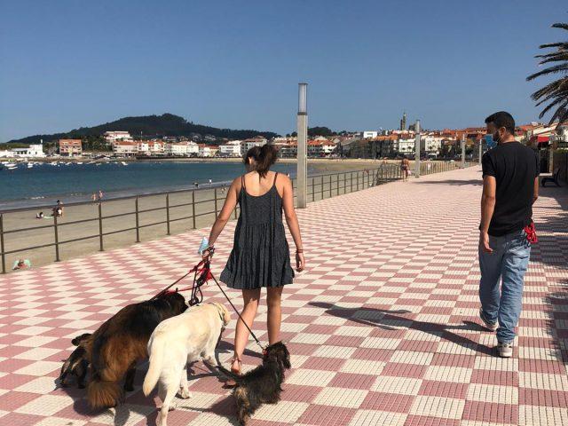 https://www.danielcanela.es/wp-content/uploads/2020/09/clases-individuales-conducta-canina-daniel-canela-640x480.jpg